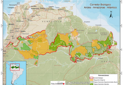 GENERAL DO EXÉRCITO DENUNCIA CONTROLE DOS ROTHSCHILDS NA AMAZÔNIA BRASILEIRA COM PATROCÍNIO DO PSDB. A SOBERANIA DO PAÍS CORRE SÉRIOS RISCOS