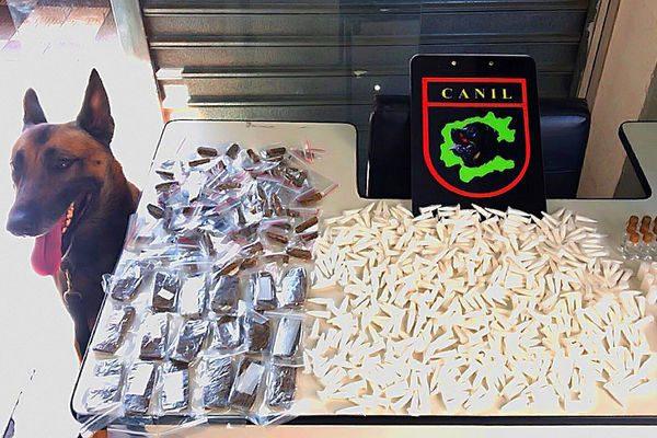 Guarda Municipal de Jundiaí | Apreensão de cocaína, maconha, crack e lança perfume