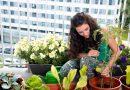 5 dicas para fazer sua própria horta caseira e agroecológica