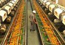 Pandemia faz Brasil dobrar exportações de frutas com vitamina C