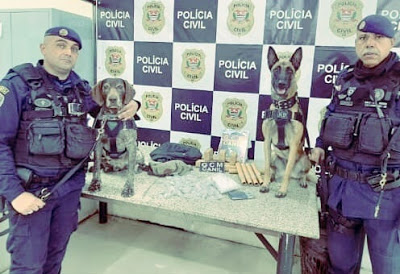 Polícia Civil e Guarda Civil fazem operação na Cracolândia