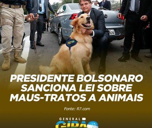 Presidente Bolsonaro sanciona que aumenta pena para maus-tratos contra animais