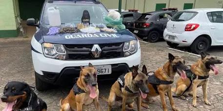 Canil da Guarda Civil de São Vicente-SP