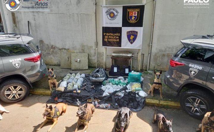 Polícia Militar apreende drogas e armas em Paraisópolis